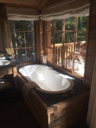 Bath tub in the forest!